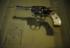 Para proteger a mãe, crianças de 8 e 13 anos fogem de casa com arma do pai